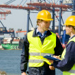 Dockers in a container harbor - Stock Photo