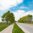 Road an a bicycle lane - Stock Photo