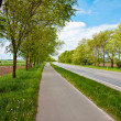 Stock Photo: Road an a bicycle lane