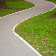 Stock Photo: Park path