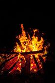 Burning Fire — Stock Photo