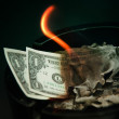 Dollar burning - Stock Photo