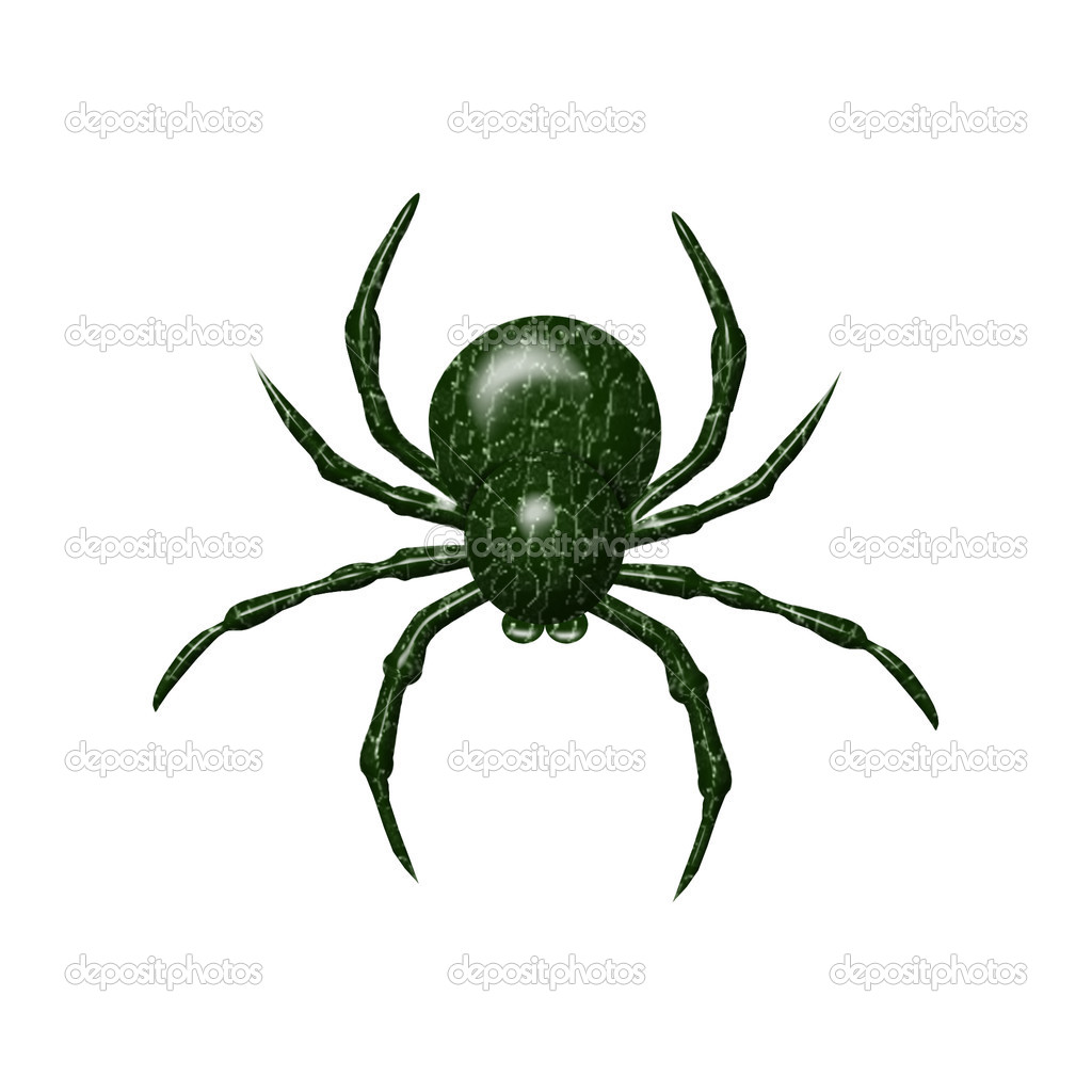 Oklahoma Spider Identification http://depositphotos.com/5764925/stock-illustration-Colorful-spider.html