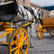 Horse and cart - Stock Photo