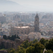 Arial view of the cathedral in Malaga - Stock Photo