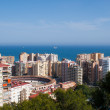 Malaga Bull ring arial view - Stock Photo