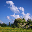 Stock Photo: Large boulder in meadow