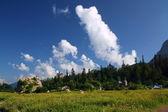 Nelle montagne del caucaso — Foto Stock