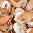 Stock Photo: Eggshell cracks