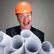 Expressive contractor with plans — Stock Photo