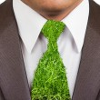 Businessman formal suit with grass tie - Stock Photo