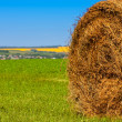 Big bale of straw — Stock Photo #6123021