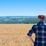 Farmer in wheat field — Stock Photo