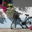 Stock Photo: Bicycle with flowers