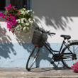 Stock fotografie: Bicycle with flowers