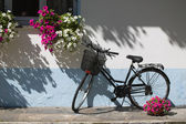 Bicycle with flowers — Stockfoto