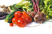Vegetable harvest — Stock Photo
