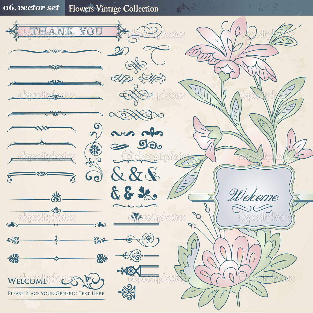 Set of vintage flower and elements  Stock Vector #5958775
