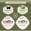 Set of olive oil labels — Imagen vectorial