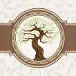Olive tree vector — Stockvectorbeeld