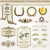 Collection of olive elements — Stock Vector