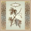 Royalty-Free Stock Imagen vectorial: Vintage grape elements for wine label, menu, print material