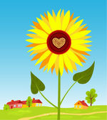 Sunflower. — Stock Vector
