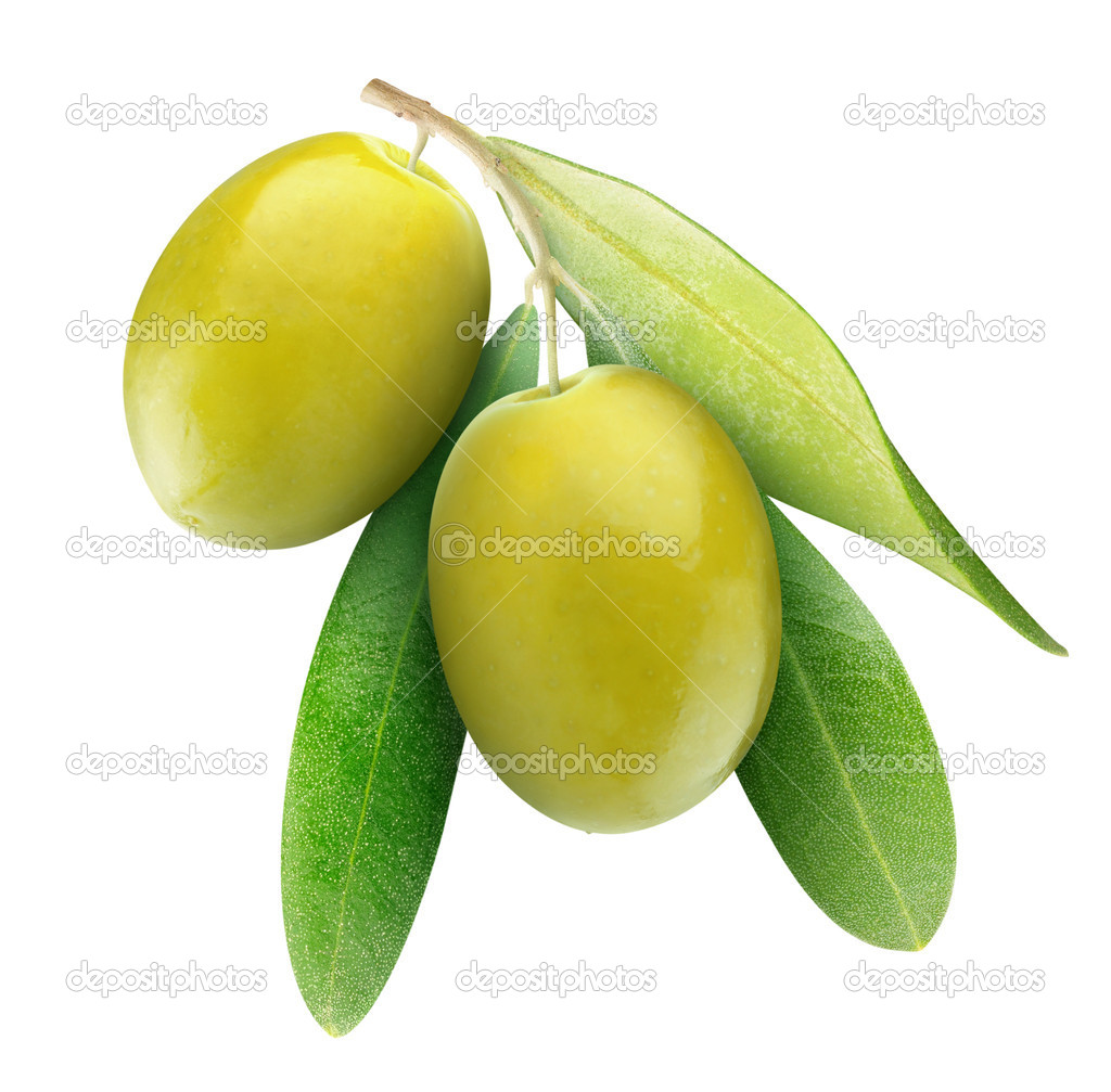 Two green olives on branch with leaves isolated on white — Stock Photo #5896742