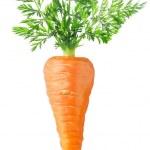 Carrot — Stock Photo #6658290