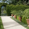 Garden walkway — Stock Photo #5482909