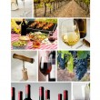 Wine industry collage — Stock Photo