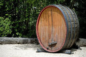 Old wine barrel — Stock Photo
