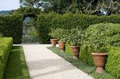 Garden walkway — Stock Photo