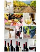 Collage de l'industrie du vin — Photo
