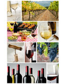 Collage de l'industrie du vin — Photo