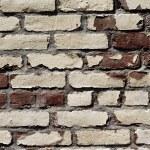 Brick background — Stock Photo #5710695