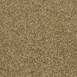Sand closeup — Stock Photo #5777125