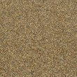 Sand closeup — Stockfoto