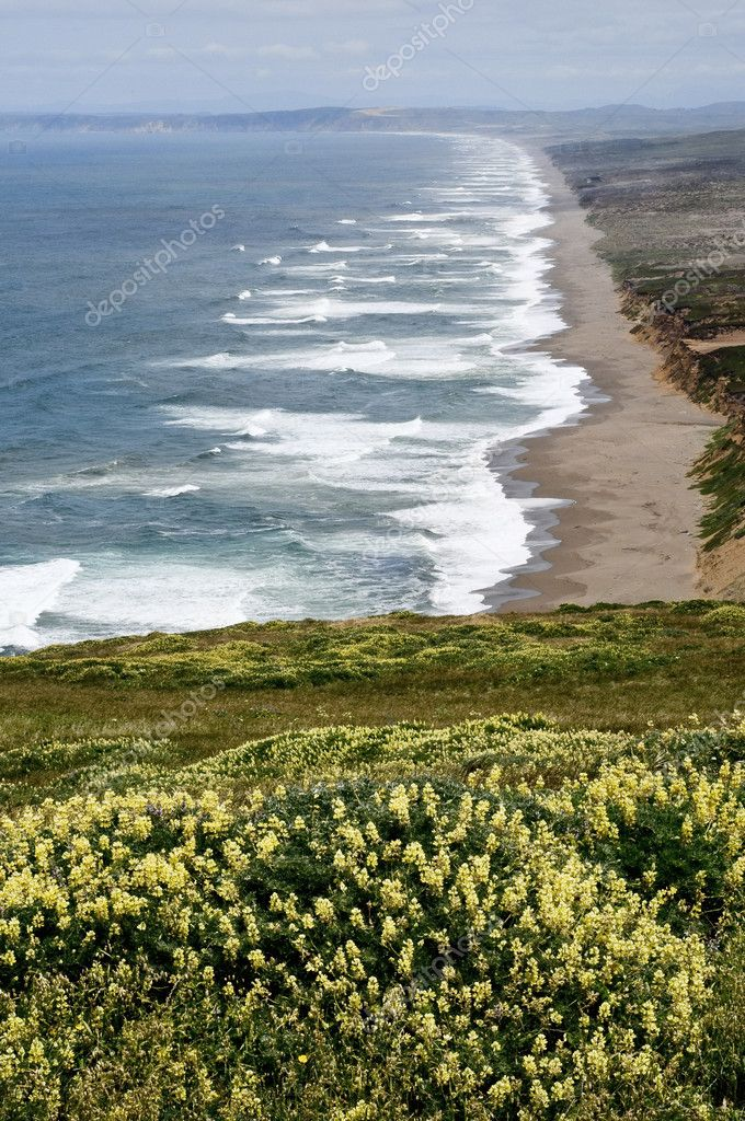 Northern california shoreline, pacific ocean, point reyes nationa recreation area — Stock Photo #5776944