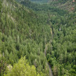 Oak Creek Canyon, Arizona - Stock Photo