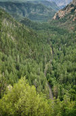 Oak Creek Canyon, Arizona — Stock Photo