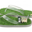 Stock Photo: Mowing Grass Sandals