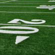 Royalty-Free Stock Photo: 20 Yard Line on American Football Field