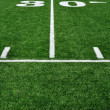 30 Yard Line on American Football Field - Stockfoto