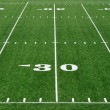 Stock Photo: 30 Yard Line on AmericFootball Field