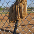 Baseball Bat and Glove - Foto de Stock