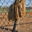 Baseball Bat and Glove - Stockfoto