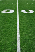 30 Yard Line on American Football Field — 图库照片