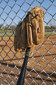 Baseball Bat and Glove — Stock Photo