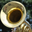 Playing Marching Tuba in Parade — Stock Photo #6507786